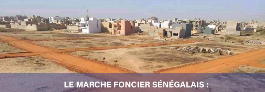 Le marché foncier sénégalais : quelles solutions pour sécuriser ?